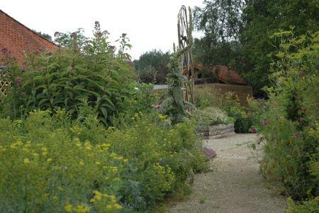 Jardin médicinal à Ellezelles (Les Jardins de la Grange) (3).JPG