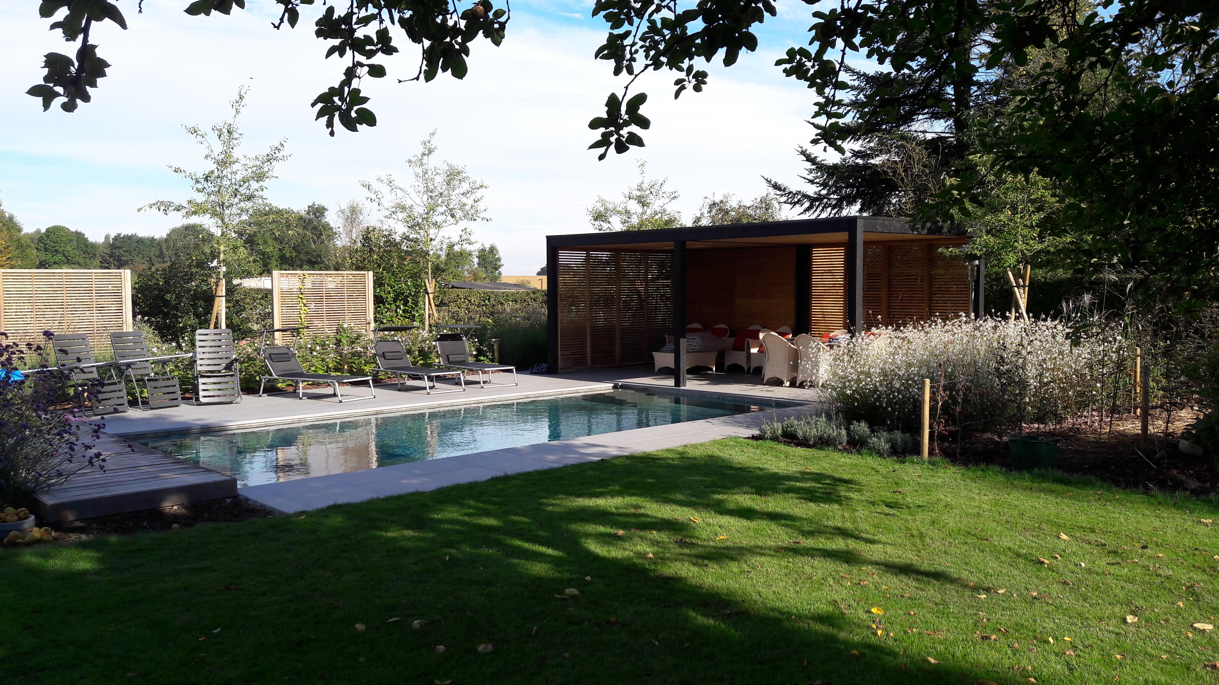 int gration d 39 une piscine dans un jardin l 39 esquisse du jardin. Black Bedroom Furniture Sets. Home Design Ideas