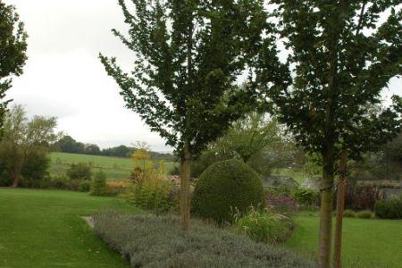 Jardin privé à Vellereille les Brayeux.JPG